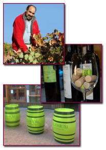 PabloD Gourmet - Javier Sanz Viticultor