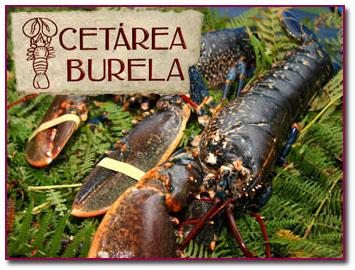 PabloD Gourmet - Cetarea Burela en navidad 2012