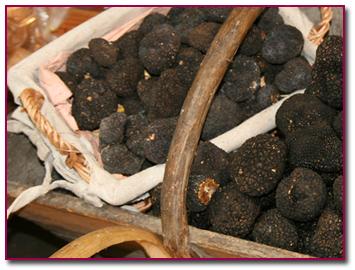 PabloD Gourmet - Las trufas por Arancha Herrero