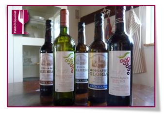 PabloD Gourmet - Vinos de Bodegas Manuel Aragón