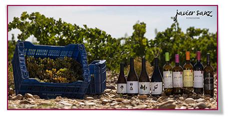 Los vinos de Javier Sanz Viticultor