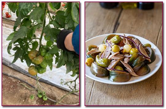 PabloD-Gourmet - Un auténtico homenaje a todos los agricultores y la hostelería española.